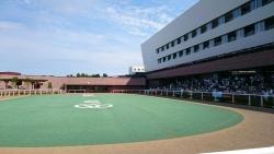 札幌競馬場パドック