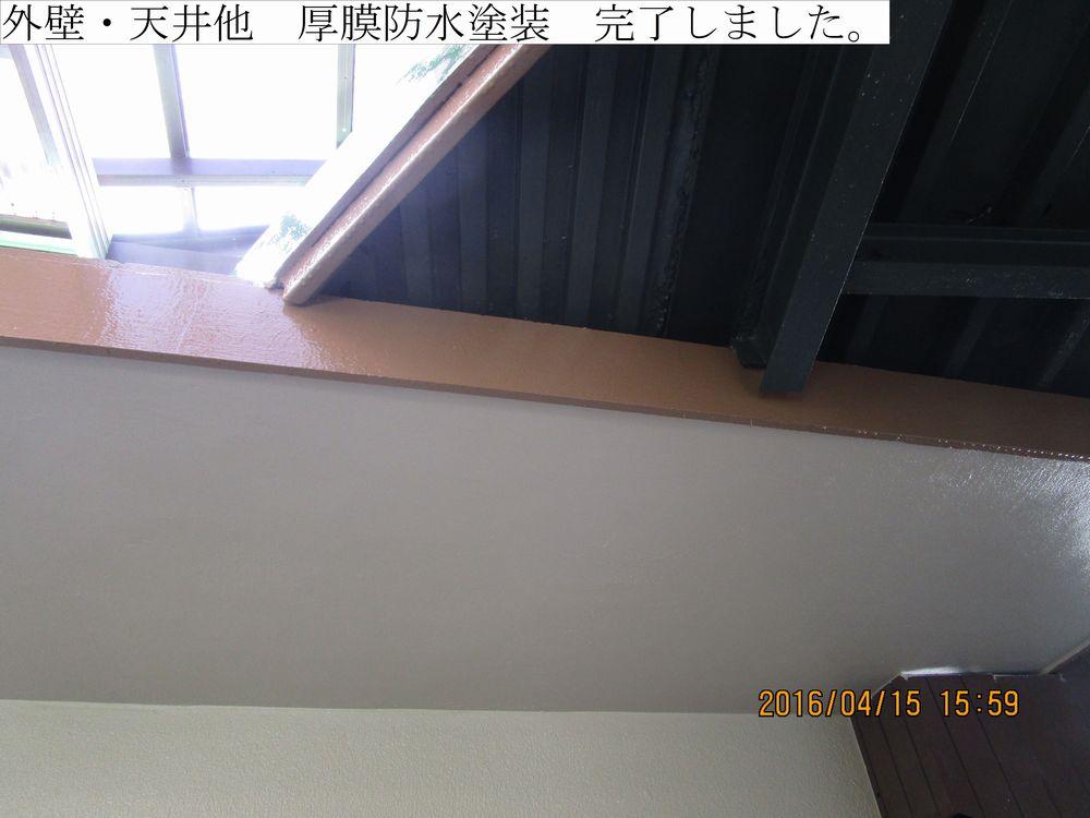 IMG_4463web.jpg