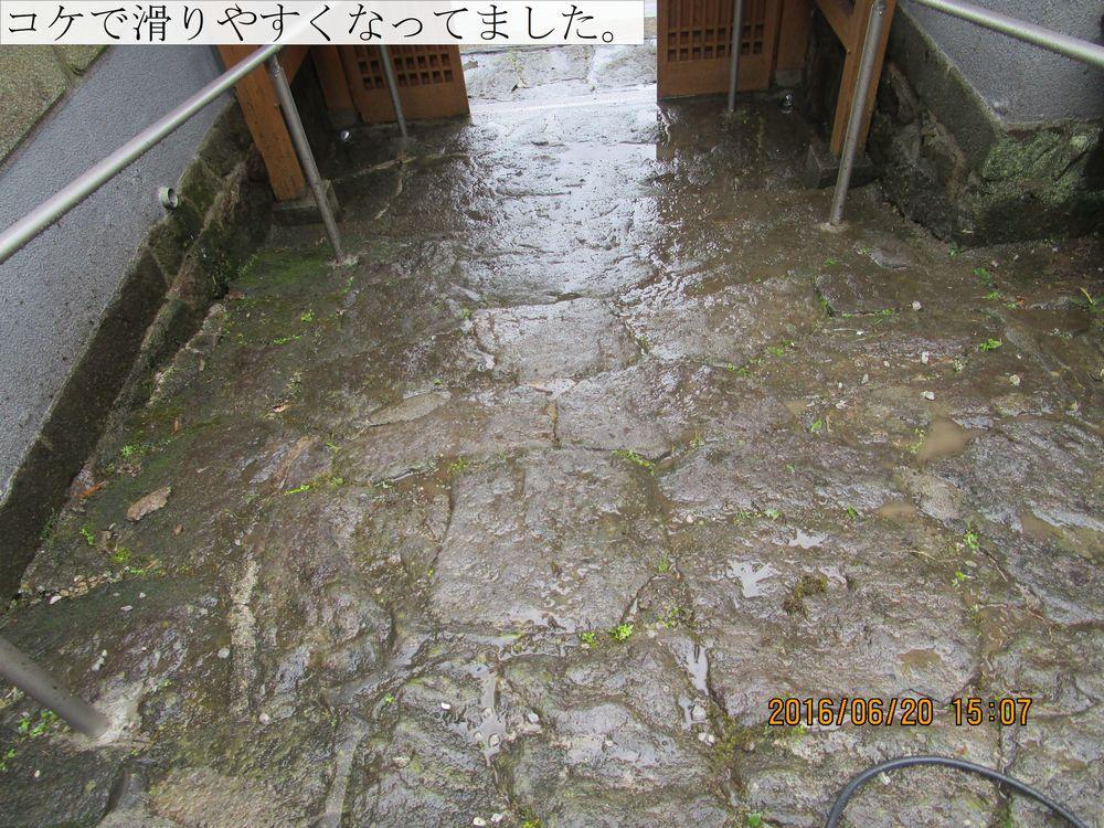 IMG_4914web.jpg