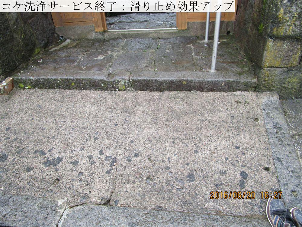 IMG_4925web.jpg