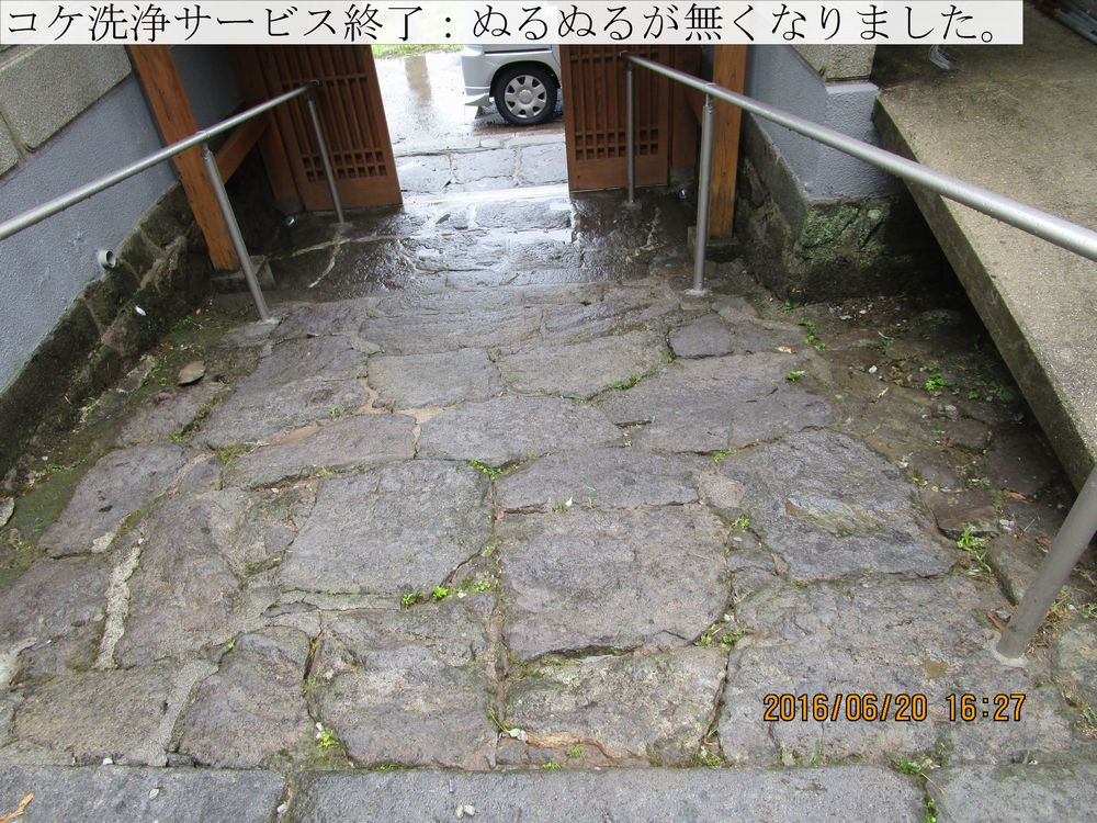 IMG_4926web.jpg