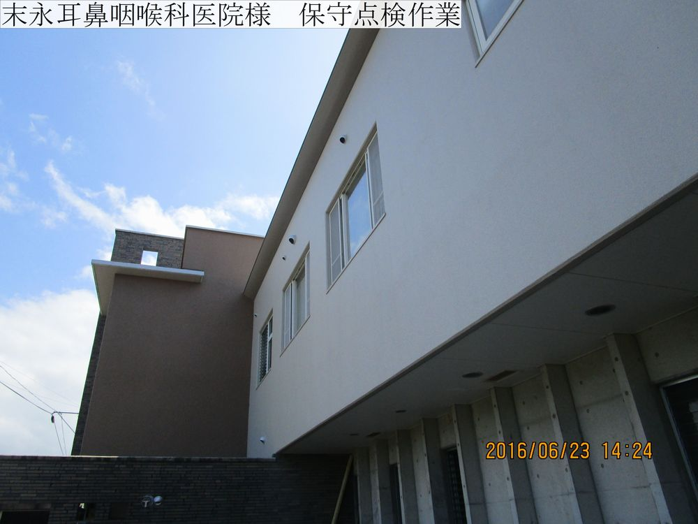 IMG_4927web.jpg