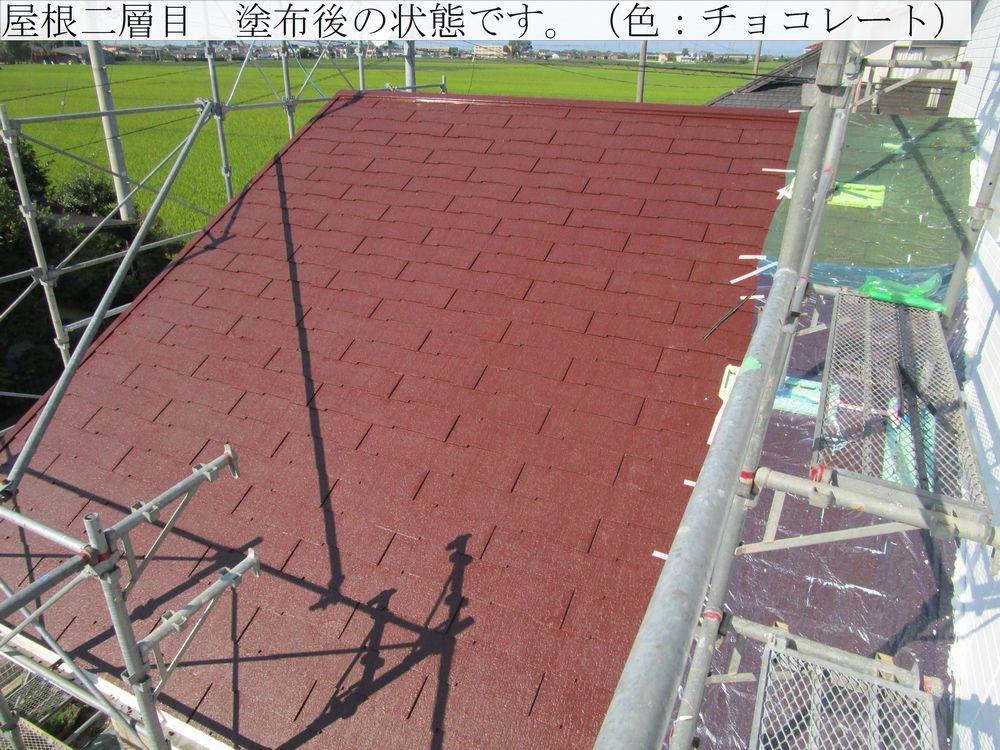 IMG_5438web.jpg