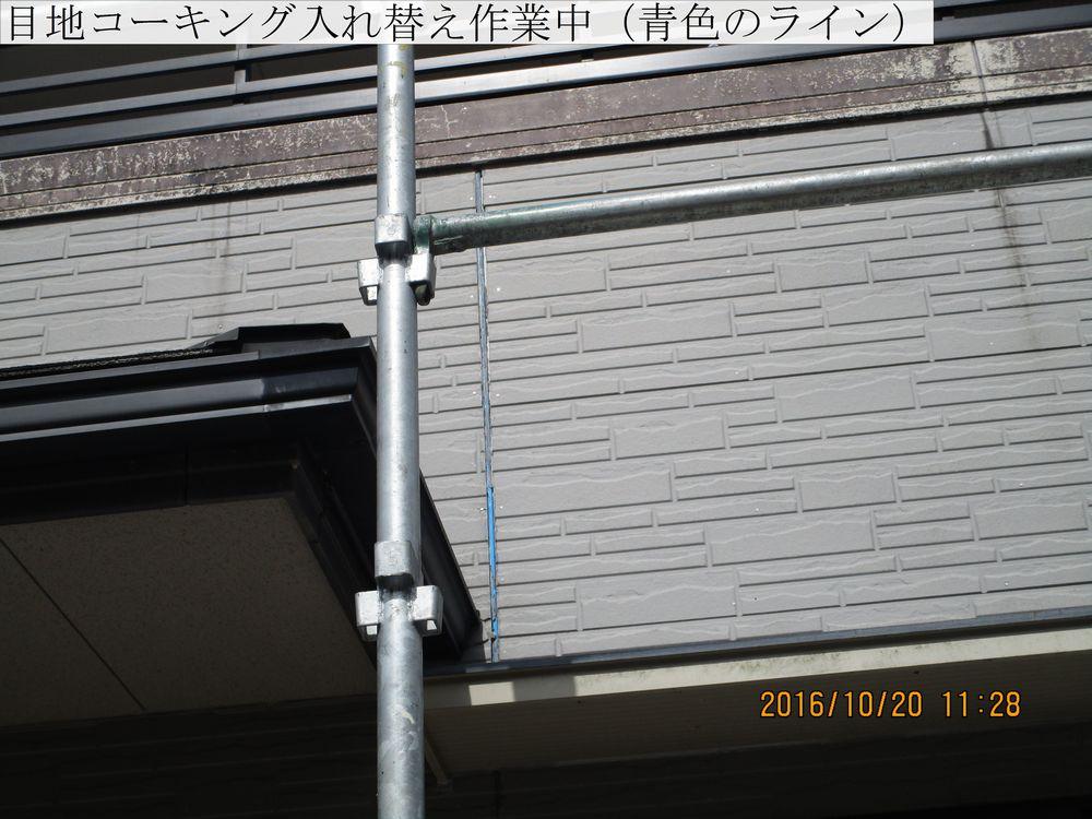 IMG_5618web.jpg
