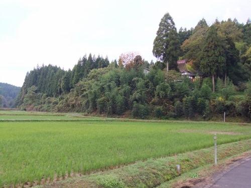 161030kuniyasu