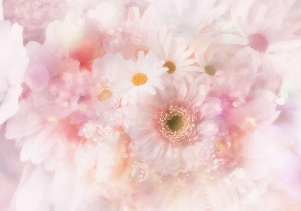 flower-back1099-01_20160820174651b6b.jpg