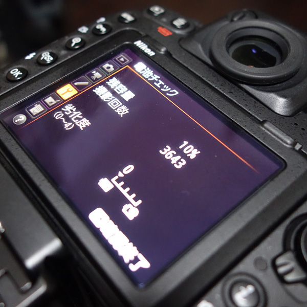 D500-DSC03209.jpg