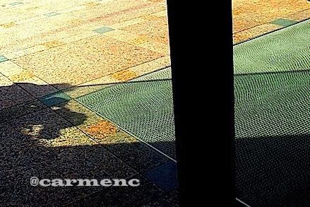 グリーンと黄の舗道