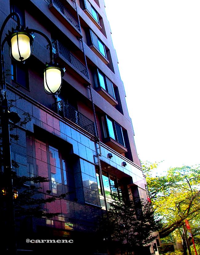 ビル写り込み街灯樹木