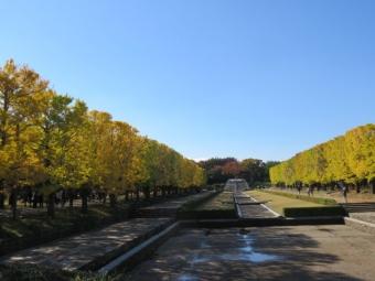 昭和記念公園 157