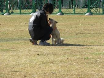 昭和記念公園 079