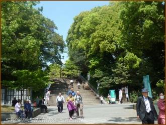 20160428  公園  2  上野から根津