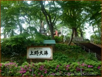 20160428  公園  8  上野から根津