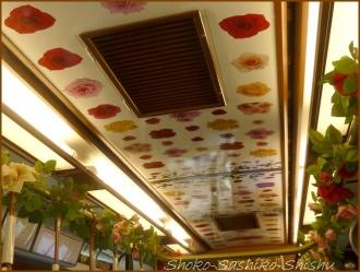 20160523  車内 1  バラ号・荒川線