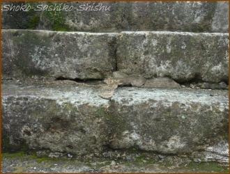 20160623  石 1  古い階段