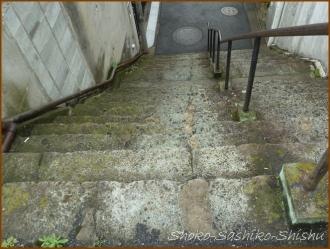 20160623  全体 3  古い階段