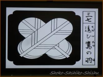 20160720  講義  4   紋