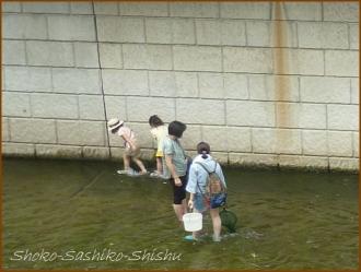 20160729  女の子  2  神田川