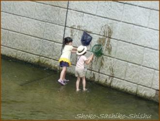 20160729  女の子  4  神田川
