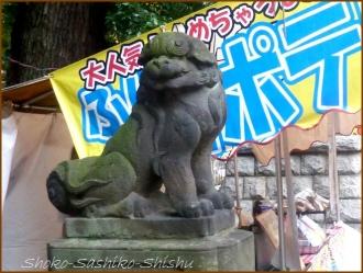 20160828 境内  4   諏訪神社