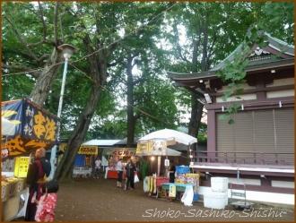 20160828 境内  7   諏訪神社