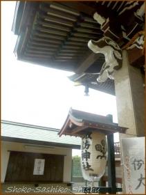 20160828 本殿  6   諏訪神社