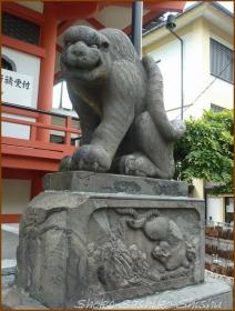 20160908 石虎  2   神楽坂