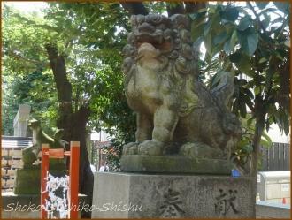 20160924  皆中稲荷神社  7   大久保
