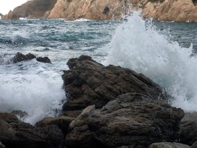 高波で洗われる岩礁