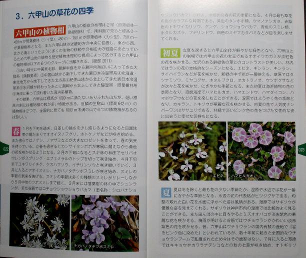六甲山の草花の四季