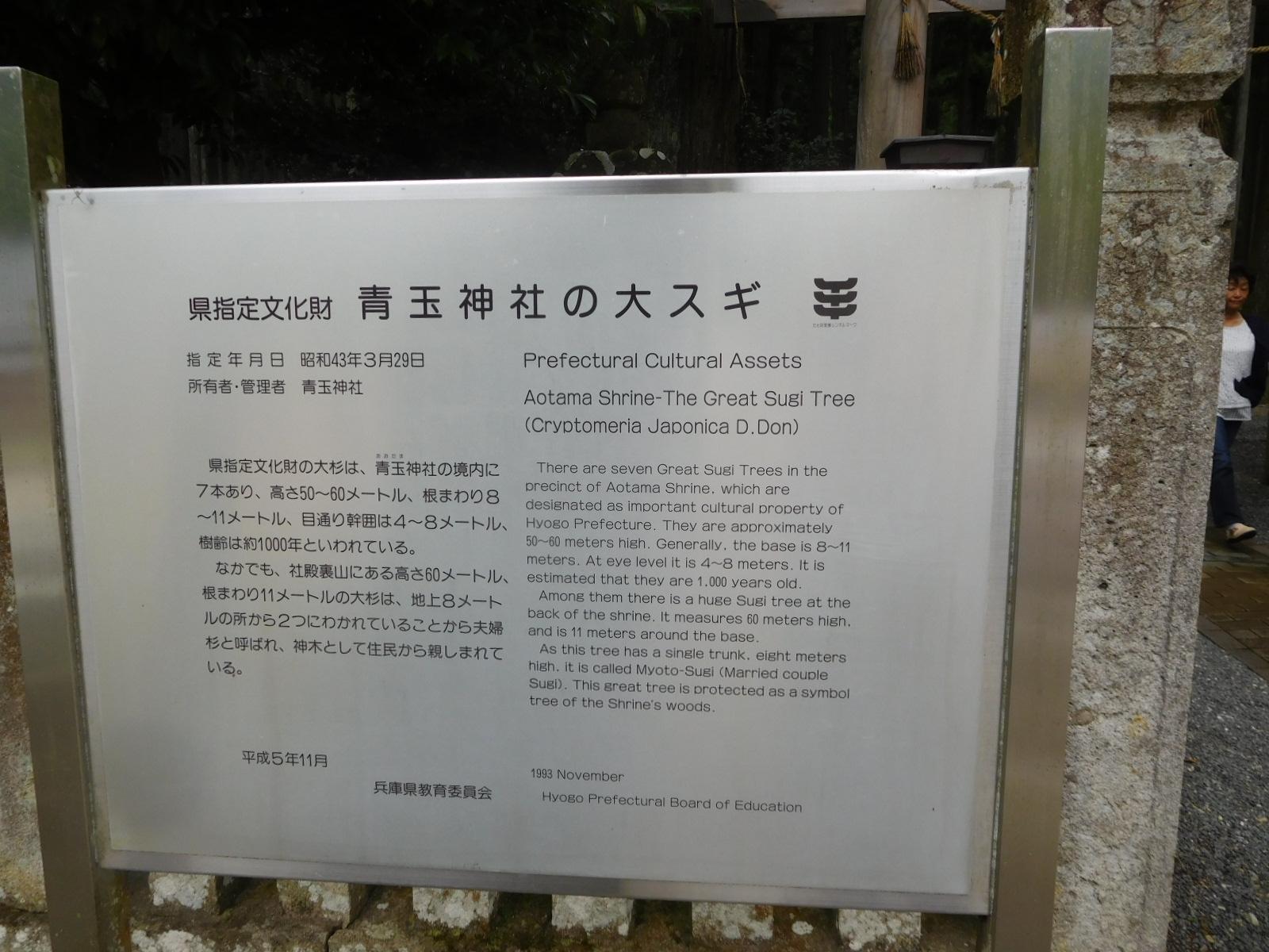 DSCN3881.jpg