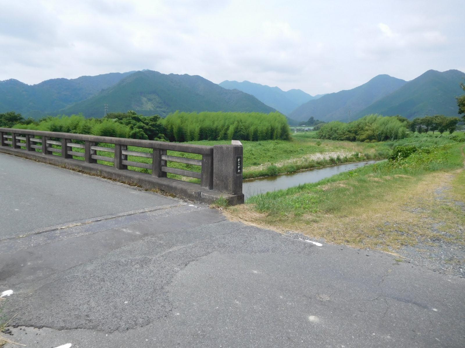DSCN4230.jpg
