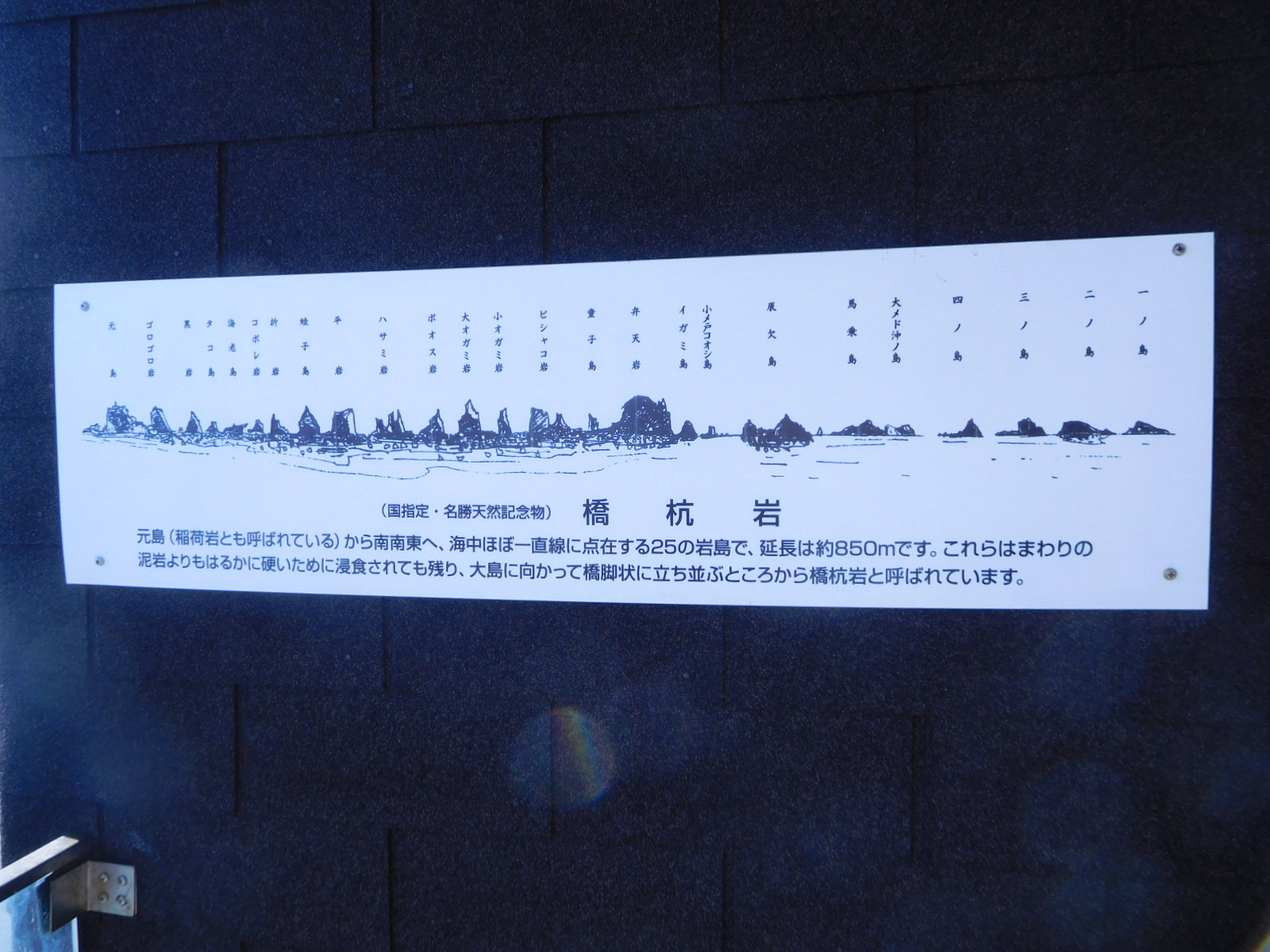 DSCN5232.jpg