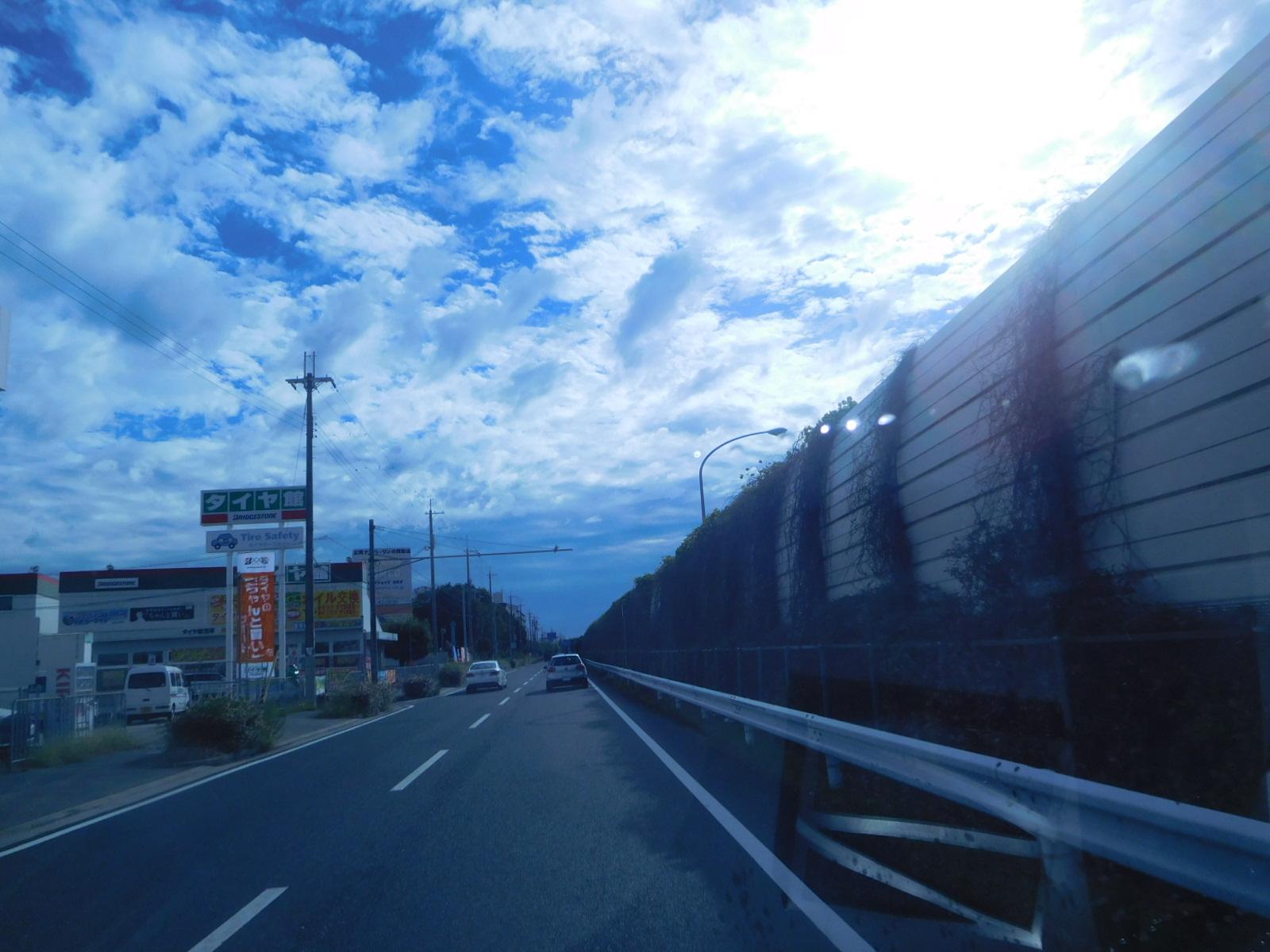 DSCN6259.jpg