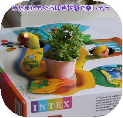 おもちゃ箱④