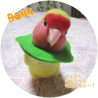ボンちゃん②