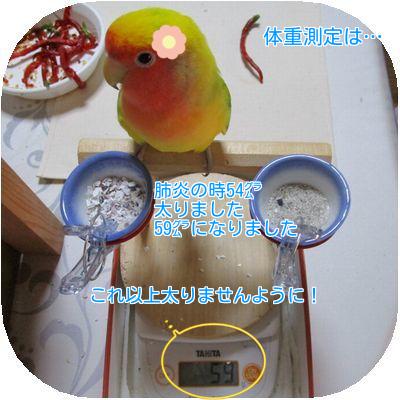 体重測定①