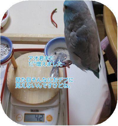 体重測定③