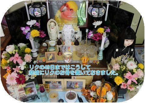 ④リクの祭壇
