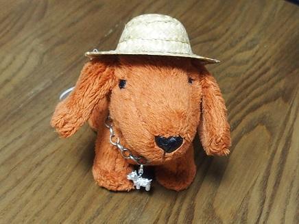 ダロちゃんの帽子