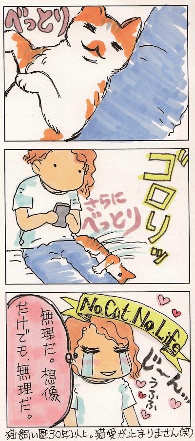 世界から猫が…2-2