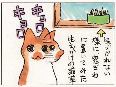 猫草事情2 1-2