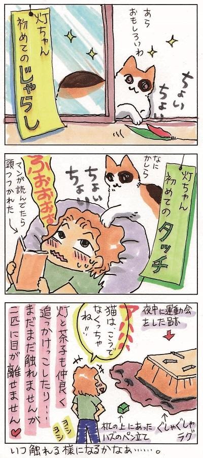 続 あかりちゃん 2-2