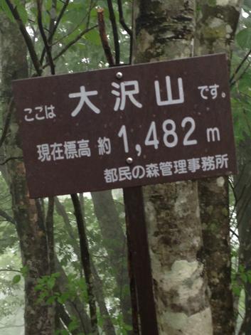 16061609三頭~槇寄