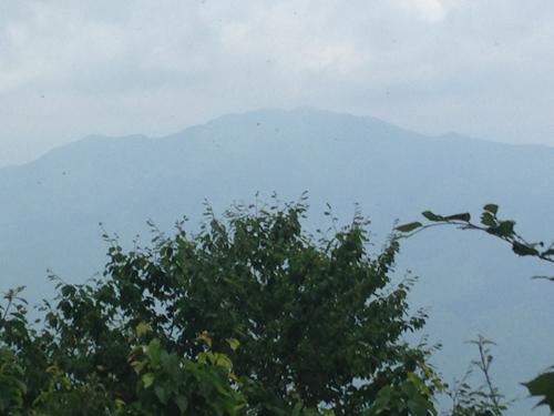 16071208権現山