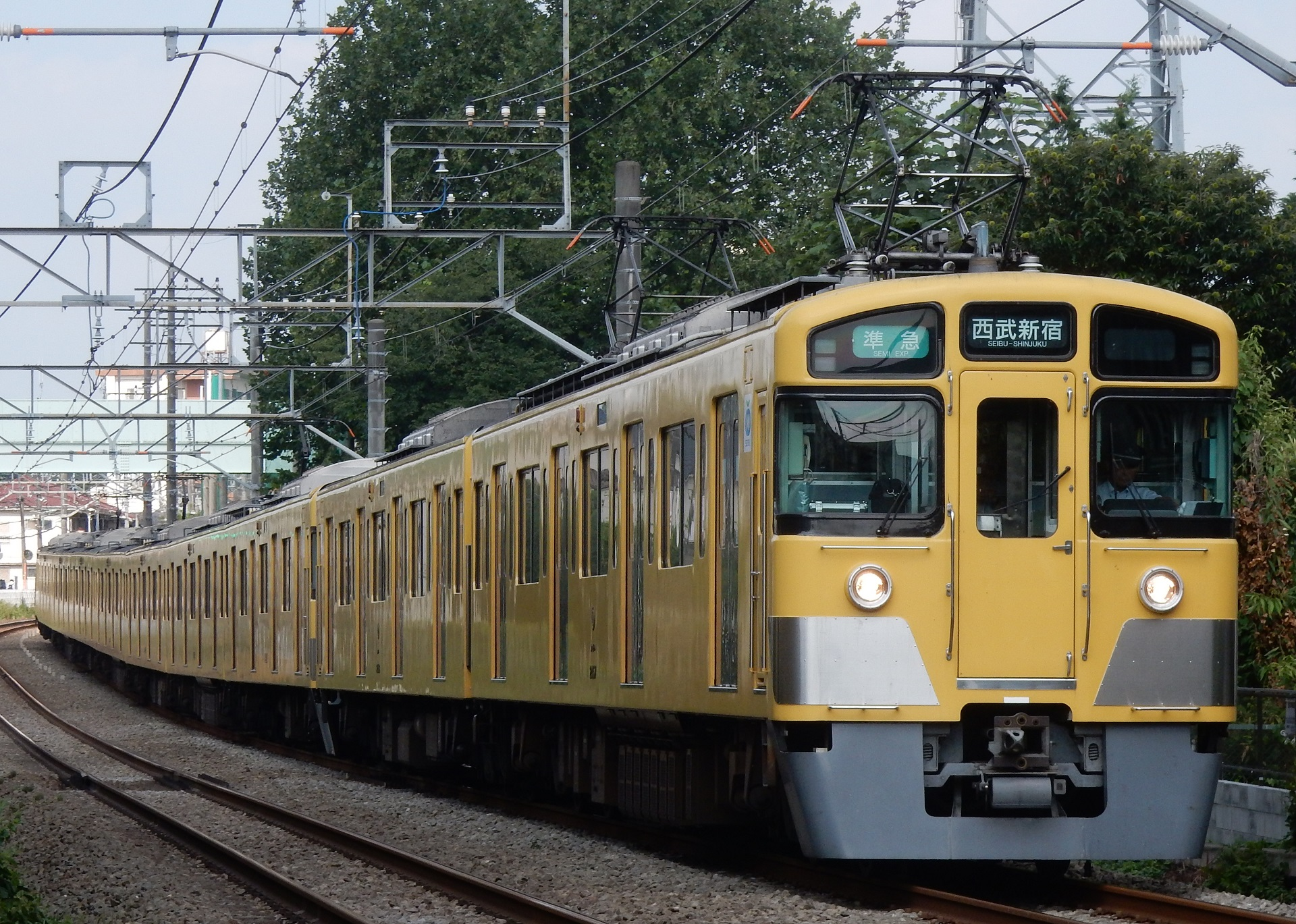 DSCN4955 - コピー