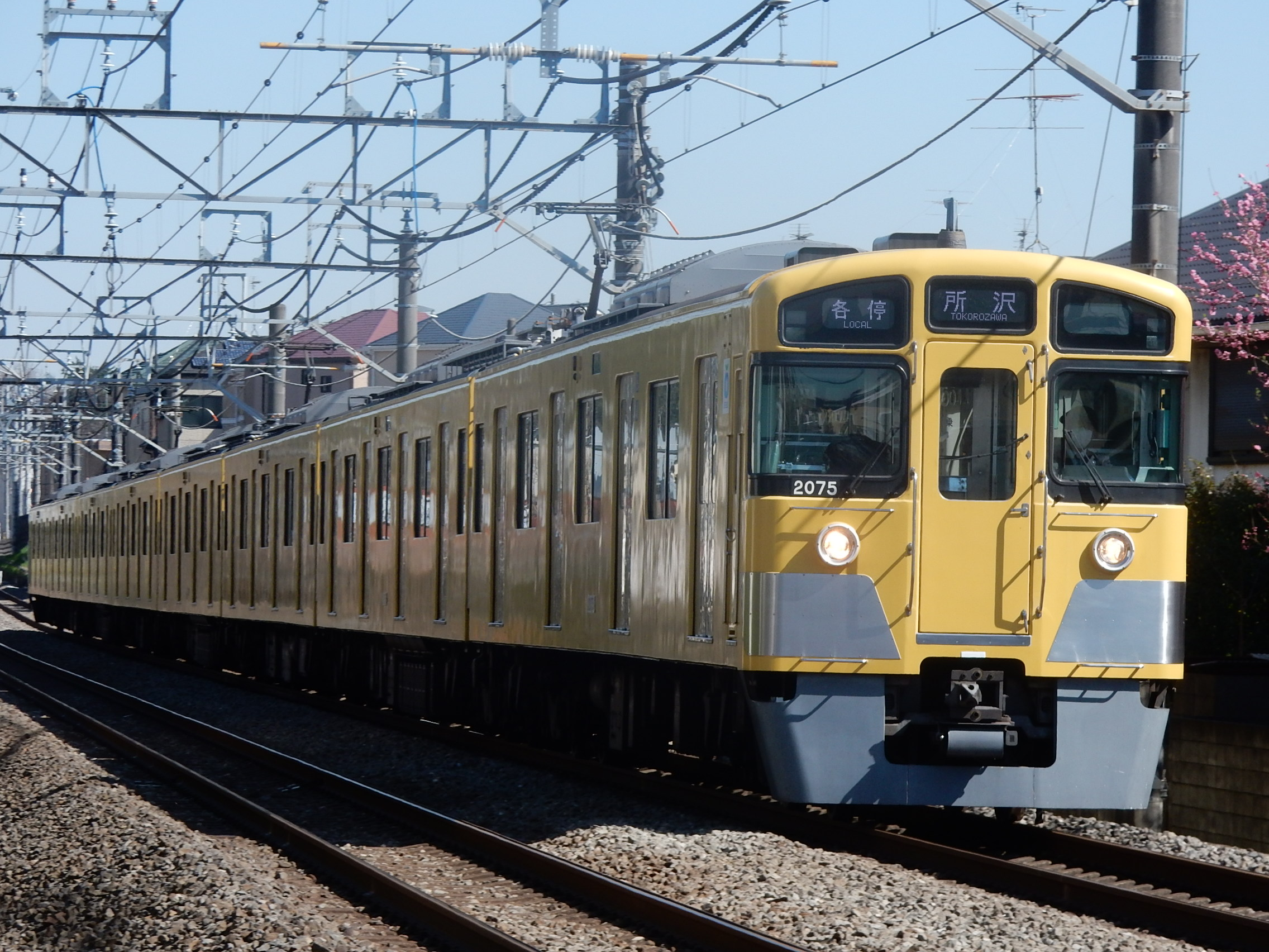 DSCN4898.jpg