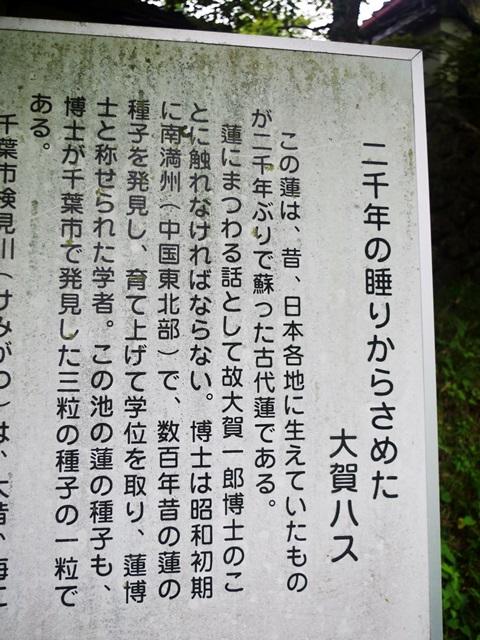 160711_04.jpg