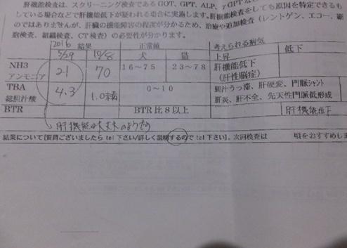 DSCF3529-5911.jpg