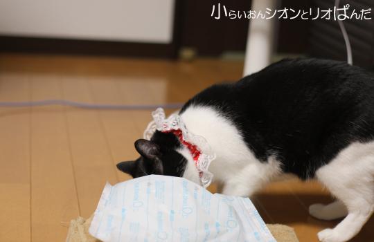 kawaii247.jpg